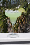 Margarita. With lime slice garnish.  Palm tree in background Stock Photo