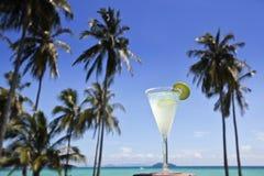 Margarita cocktail. Royalty Free Stock Images