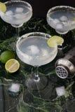 Margarita Cocktails gelado fotos de stock