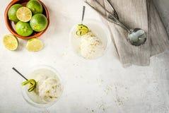 Margarita di galleggiamento del cocktail Immagine Stock