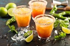 Margarita do nascer do sol do Tequila imagem de stock