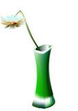 Margarita en un florero verde Fotos de archivo libres de regalías