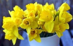 Margarita - flor Foto de archivo