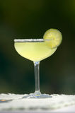 Margarita with Lime and Salt Stock Image