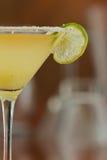 Margarita martini Arkivbilder