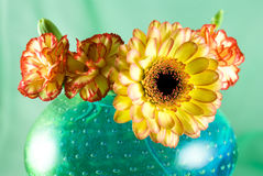 Margarita and pink flowers. In a colorful glass vase isolated on green background Stock Photo