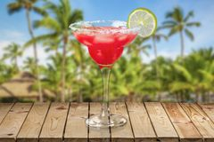 Margarita Royalty Free Stock Photo