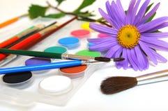 Margarita y caja de pinturas púrpuras Imágenes de archivo libres de regalías
