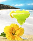 Margaritabeach Royalty Free Stock Photos