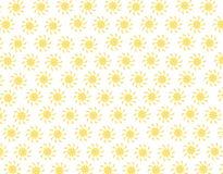 Margaritas Imagen de archivo libre de regalías