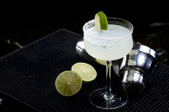 margaritas Obrazy Royalty Free