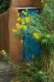 Margaritas amarillas por la puerta azul del jardín Imágenes de archivo libres de regalías