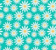 Margaritas blancas en modelo inconsútil del vector del fondo de la turquesa Foto de archivo libre de regalías
