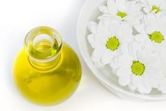 Margaritas blancas que flotan en un tazón de fuente de agua Imagenes de archivo
