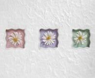 Margaritas en colores pastel onduladas imagenes de archivo