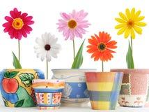 Margaritas en crisoles Imagen de archivo libre de regalías