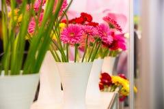 Margaritas en florero foto de archivo libre de regalías