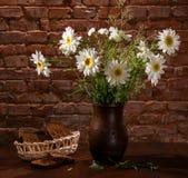 Margaritas en pedazos del florero y de la panadería de pan Fotografía de archivo libre de regalías