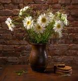 Margaritas en pedazos del florero y de la panadería de pan Imagen de archivo libre de regalías