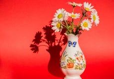 Margaritas en un florero en un fondo rojo Imagenes de archivo