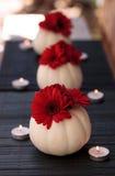 Margaritas rojas del gerbera en las calabazas blancas talladas de Casper Foto de archivo