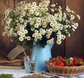 Margaritas y cesta de fresas, aún vida rústica Foto de archivo libre de regalías