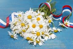 Margaritas y cinta tricolora Día de Peter y de Fevronia Imagen de archivo libre de regalías