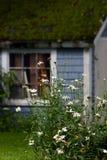 Margaritas y granero de la azotea del musgo Fotos de archivo libres de regalías