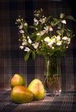 Margaritas y peras Imágenes de archivo libres de regalías