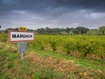 Margaux vinregion av Bourgogne, Frankrike Arkivfoton