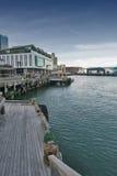 Margem de Wellington, ilha norte de Nova Zelândia Foto de Stock