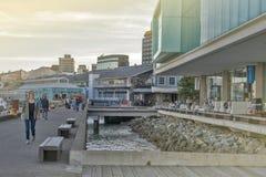 Margem de Wellington, ilha norte de Nova Zelândia Fotos de Stock