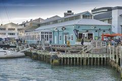 Margem de Wellington, ilha norte de Nova Zelândia Foto de Stock Royalty Free