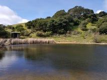 Margem nas lagoas escondidas Foto de Stock Royalty Free