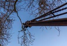 Margem velha do guindaste do ferro, a vista da parte inferior, de histórico Imagens de Stock Royalty Free