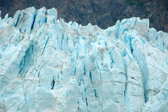 margerie för glaciär för alaska fjärdclose upp Arkivbilder