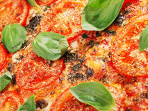 Margharita Pizza Stock Photography
