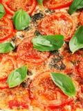 Margharita Pizza Royalty Free Stock Photos