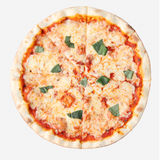 Margherita Royalty Free Stock Photography