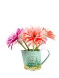 Margherita decorativa della gerbera in vaso fotografia stock