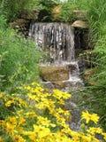 Margherite e cascata gialle Immagine Stock Libera da Diritti
