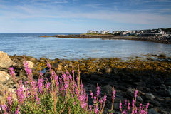Marginal way in Maine Stock Images