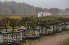 Marglisty pałac w mgle peterhof Rosja Fotografia Stock