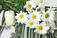 Margrieten met candel Stock Fotografie
