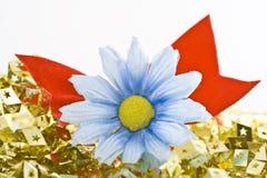Marguerite avec des étoiles d'or Images libres de droits