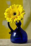 Marguerite jaune de Gerbera de Gerber dans le vase à bleu de cobalt Photo libre de droits