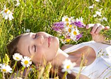 Marguerite-land 5 Stock Images