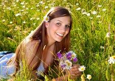 Marguerite-land 7 Royalty Free Stock Photos
