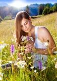 Marguerite-terra 8 foto de stock