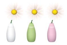 Marguerites dans des vases Photographie stock libre de droits